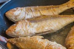 Faixa de peixes que cozinha na bandeja de fritada, preparação dos alimentos Fotos de Stock Royalty Free
