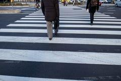 Faixa de travessia tokyo das ruas Fotografia de Stock Royalty Free