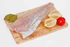 Faixa de um bacalhau Atlântico Fotografia de Stock Royalty Free
