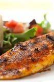 Faixa enegrecida da salada do Tilapia imagens de stock royalty free
