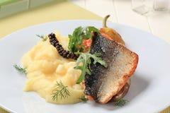 Faixa Roasted da truta salmon imagens de stock
