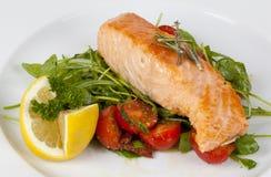 Faixa Salmon Imagem de Stock Royalty Free
