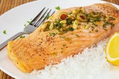 Faixa Salmon com porcas de pinho Imagens de Stock Royalty Free