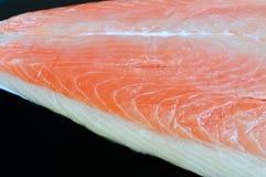 Faixa salmon crua bicolor Fotografia de Stock Royalty Free