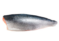 Faixa salmon crua fresca imagens de stock