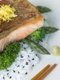 Faixa Salmon do citrino em vegetais cozinhados arroz Imagens de Stock Royalty Free