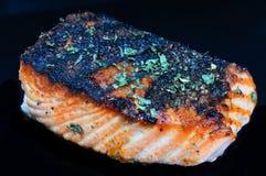 Faixa salmon enegrecida Imagem de Stock Royalty Free