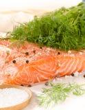 Faixa salmon fresca com as especiarias no papel do cozimento foto de stock royalty free