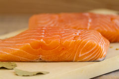 Faixa Salmon fresca crua Imagens de Stock Royalty Free