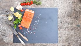 Faixa salmon salgada com especiarias fotos de stock royalty free
