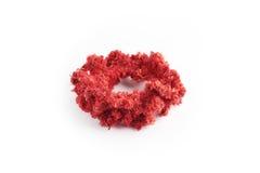 Faixa vermelha feito a mão bonita feita por lãs Imagem de Stock Royalty Free