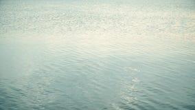 Faixas claras da rocha através das ondinhas saindo de superfície e dos círculos da água calma filme