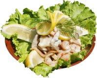 Faixas da carne da galinha com cebolas e salada verde Foto de Stock Royalty Free