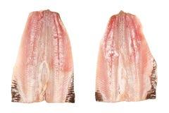 Faixas da sardinha Imagem de Stock Royalty Free