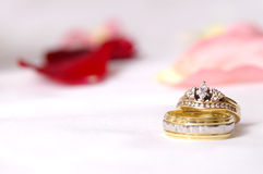 Faixas de casamento Imagens de Stock Royalty Free