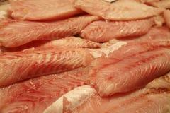 Faixas de peixes frescos imagem de stock royalty free