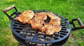 Faixas do pescoço da carne de porco imagem de stock royalty free