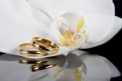 Faixas douradas Imagens de Stock Royalty Free