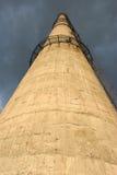 Fajczana roślina na tle burzowy niebo Dolny widok Zdjęcie Stock