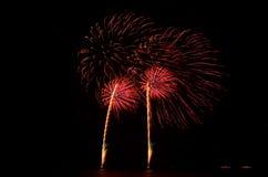 Fajerwerk, przedstawienie, świętuje królewiątko urodziny Zdjęcie Royalty Free