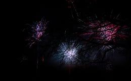 Fajerwerk przy nowym rokiem obraz royalty free