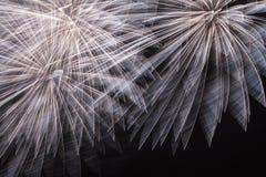 Fajerwerki, strzelający rakiety i ogienia obraz royalty free
