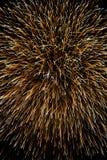 Fajerwerki w czarnym tle Fotografia Stock
