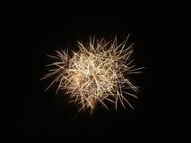 Fajerwerki w nocnym niebie Zdjęcie Stock