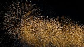 Fajerwerki w nocnym niebie, kolorowi wybuchy fajerwerki na cześć wakacje zbiory