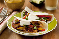 Fajita Royalty Free Stock Photos