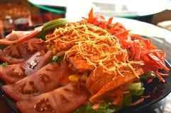 Fajitas de poulet au-dessus d'une literie de salade images stock