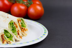 Fajitas on paper plate Stock Images