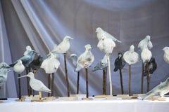 Fake birds Royalty Free Stock Photo