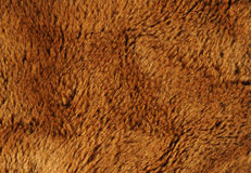 Fake brown fur. Fake animal fur in shades of brown, excellent textured background Royalty Free Stock Photos
