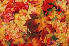 Fake colorful fall leaves Royalty Free Stock Image