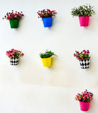 Fake colorful flower in the zinc. Vase on the wall Stock Photos