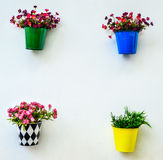 Fake colorful flower in the zinc. Vase on the wall Royalty Free Stock Images