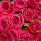 Fake dark purple roses Stock Image