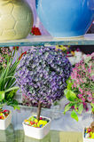 Fake decorative flowers and plants on sale Stock Image