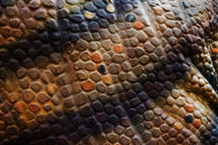 Fake dinosaur skin texture background Royalty Free Stock Photo
