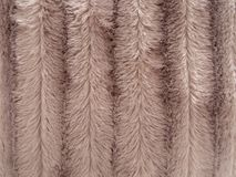Fake, faux fur fluffy background, beige stripes. stock photos