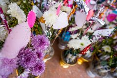 Fake Flower with stick in the tray for donate in temple as per the belief of Buddhist. In Thailand Stock Photos