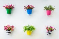 Fake flower Stock Image