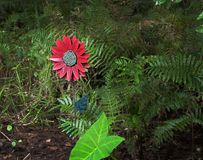 Fake flower in the woods centered Royalty Free Stock Image