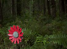Fake flower in the woods left  Royalty Free Stock Photos