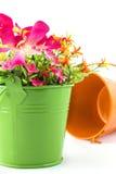 Fake flowers for interior decoration Stock Photos