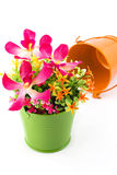 Fake flowers for interior decoration Royalty Free Stock Photos