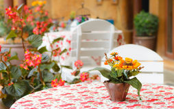 Fake flowers on table in coffee shop Royalty Free Stock Photography