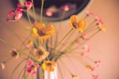 Fake flowers in a vase on the table. Photo taken inside the house Stock Photos