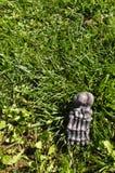 Fake foot bone Halloween decoration on grass. Fake foot skeleton Halloween decoration on grass royalty free stock images